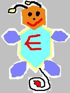 20080627_hex.jpg